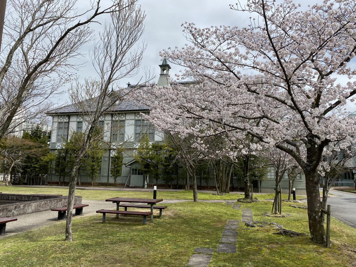 大学 奈良 女子