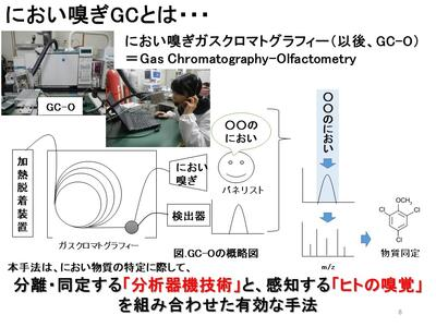 佐賀大学 上野 農 臭 匂い 汚染 分析 化学